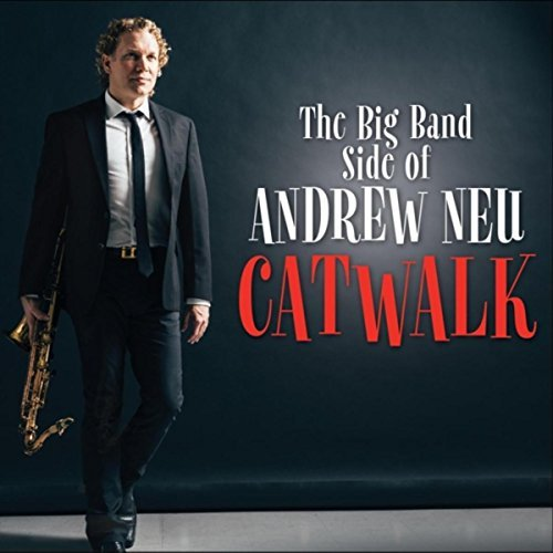 The Andrew Neu Big Band great big band fun