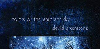 Enchanting rhythmic infectious original music David Arkenstone