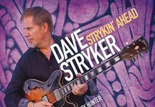 * davestryker jazz guitar leader *