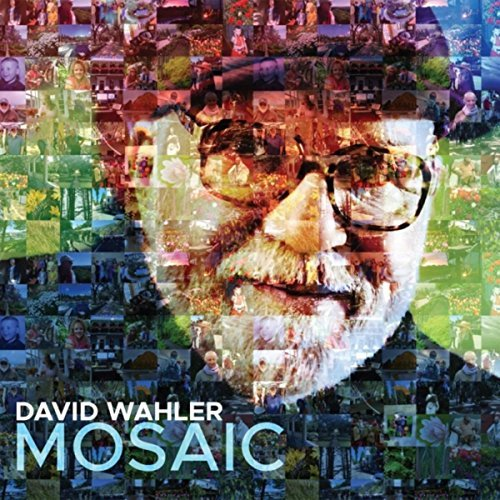 David Wahler beautifully inspiring musical montage