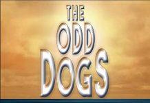 Harmonically subtle progressive jazz The Odd Dogs