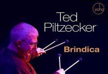 Multi faceted vibraphone jazz landscapes Ted Piltzecker