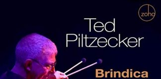 Multi faceted vibraphone jazz landscapes Ted Piltzecker