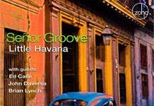 Fascinating Cuban jazz Senor Groove