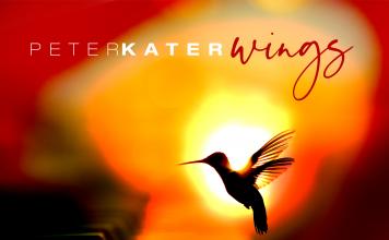 Inspirational elevating rejuvenating piano beauty Peter Kater