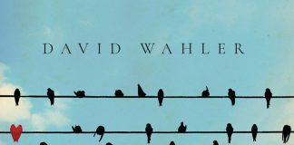 Absolutely stunning musical adventures David Wahler