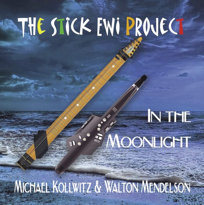Unexplored musical horizons The Stick EWI Project