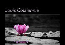 Emotional enlightened piano Louis Colaiannia