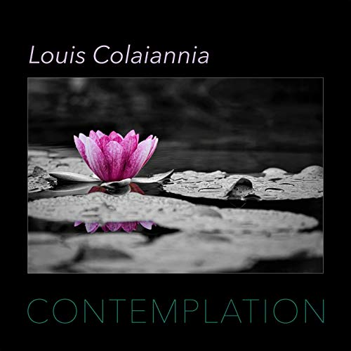 Emotional enlightened piano Louis Colaiannia