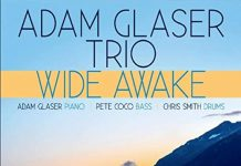 Versatile exciting jazz trio Adam Glaser Trio