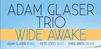Versatile exciting jazz trio Adam Glaser Trio