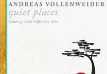Subtly captivating musical power Andreas Vollenweider