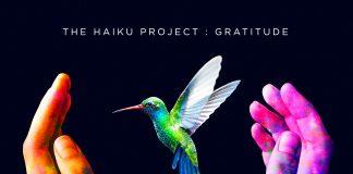 Ambient joyful rocking The Haiku Project