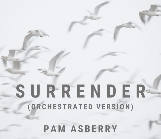 Amazingly powerful new perspectives Pam Asberry