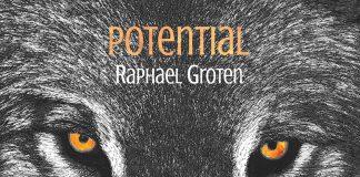 World medicine groove magic Raphael Groten